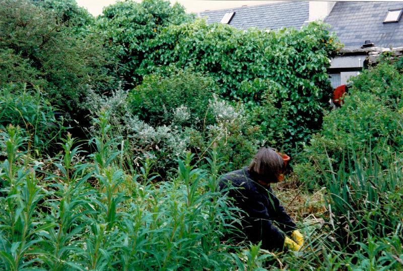 Marengo Community Garden-1997